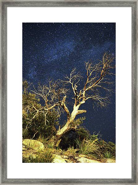 Stars Light Up Arizona Sky Framed Print