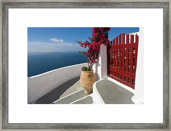 Steps And Bougainvillea Framed Print