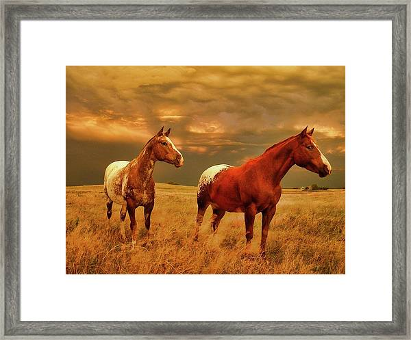 Framed Print featuring the photograph Storm Warning by Bryan Smith