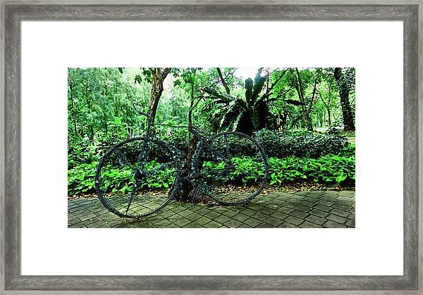 Stroll In Bangkok Framed Print