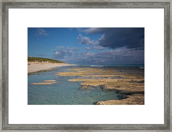 Stromatolites On Stocking Island Framed Print