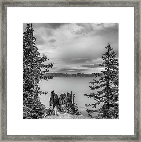 Stumped Framed Print by Joseph Smith