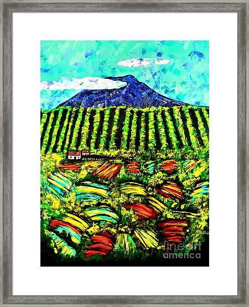 Sumatra Coffee Plantation Framed Print