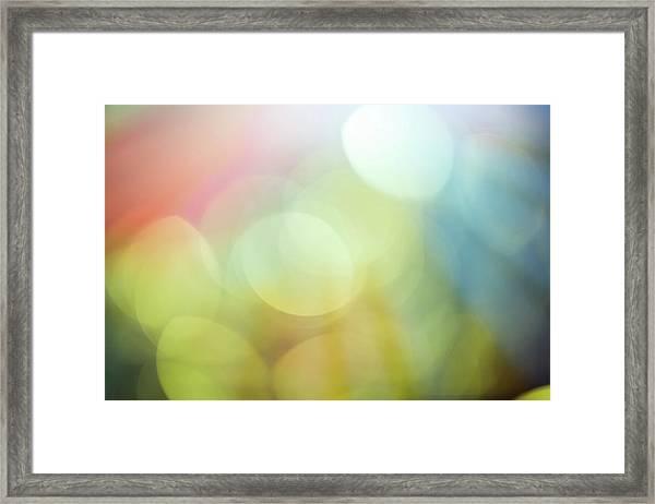 Summer Day Iv Framed Print