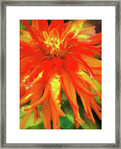 Summer Joy Framed Print