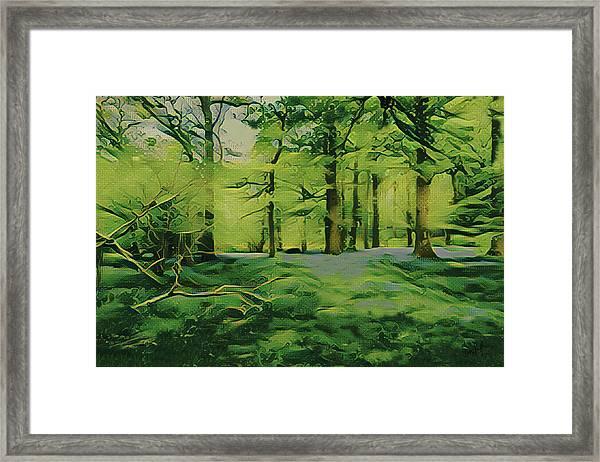 Summer Morning Mist Framed Print