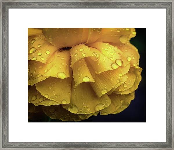 Sun And Rain Framed Print