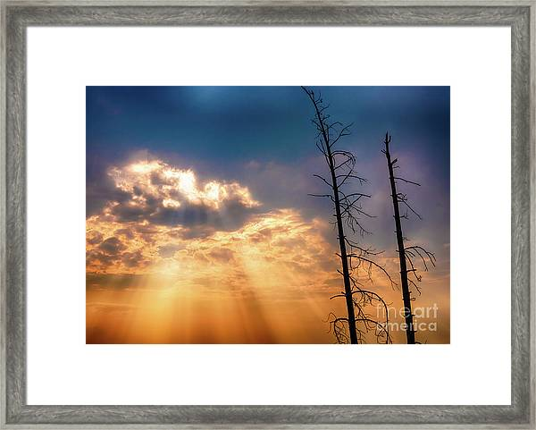 Sunbeams Framed Print
