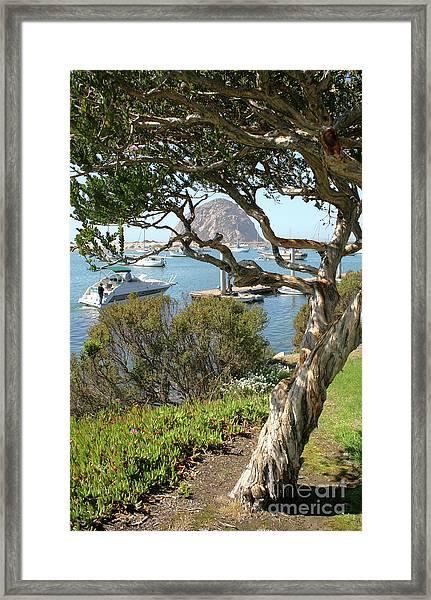 Sunny Day At Morro Bay Framed Print