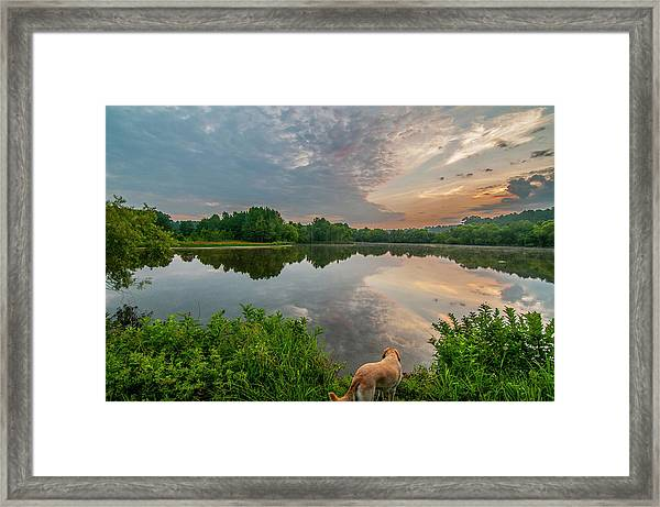 Sunrise At Ross Pond Framed Print
