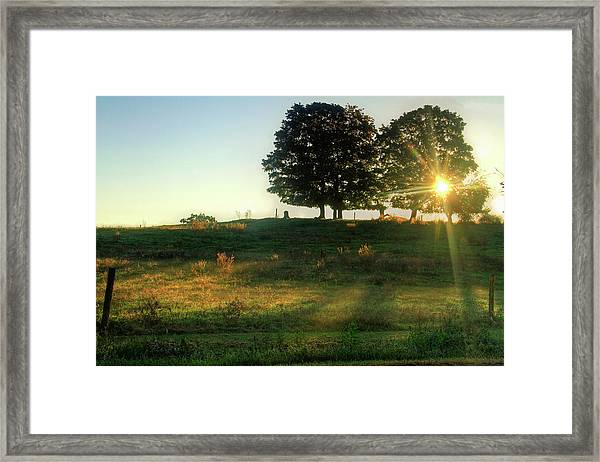 Sunrise Through Trees In Farm Field Framed Print