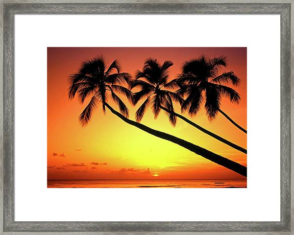 Sunset At Tropical Beach, Barbados Framed Print