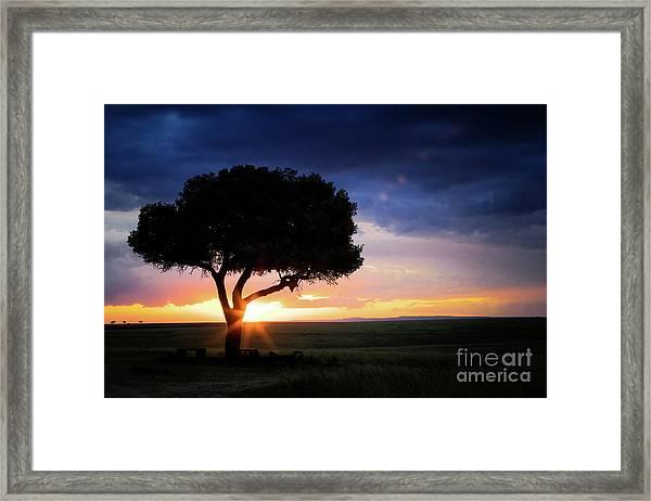 Sunset In The Masai Mara Framed Print