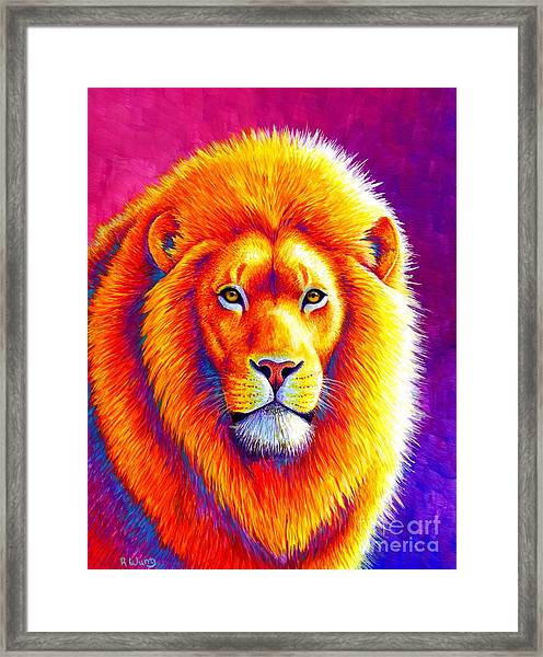 Sunset On The Savanna - African Lion Framed Print