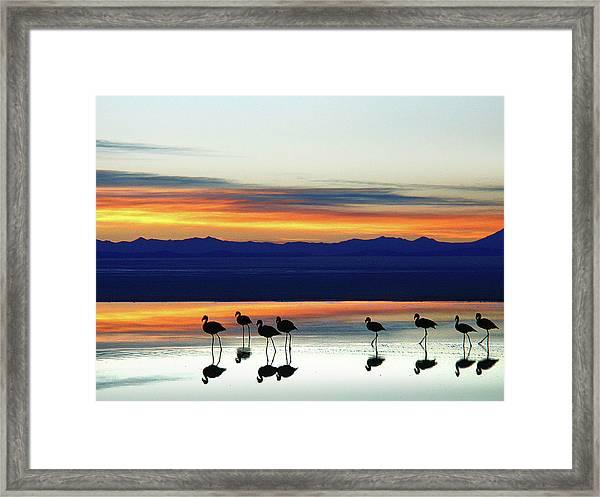 Sunset On The Uyuni Salt Desert, Bolivia Framed Print
