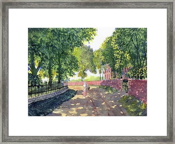 Sunshine And Shadows Framed Print