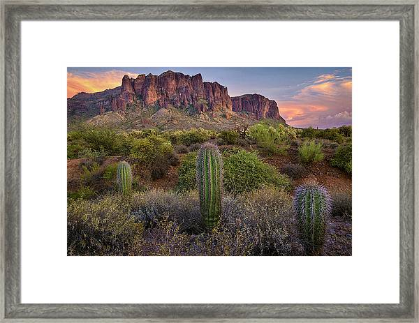 Superstitions And Cactus At Lost Dutchman  Framed Print