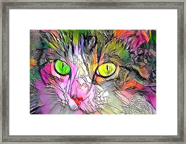Surreal Cat Wild Eyes Framed Print
