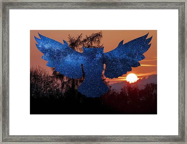 Sunset Owl Framed Print