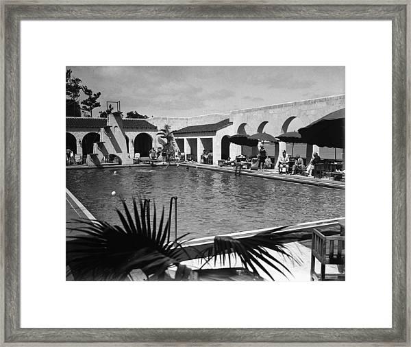Swimming In Bermuda Framed Print