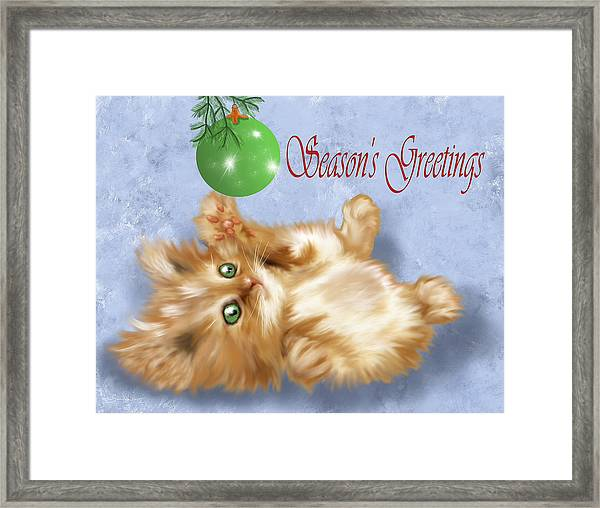 Tabby Greetings Framed Print