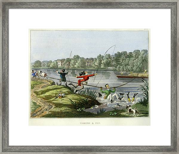 Taking A Fly Framed Print