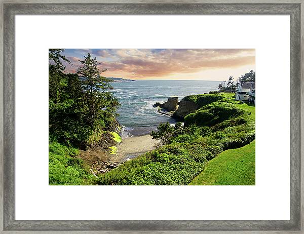 Tall Conifer Above Protected Small Cov Framed Print