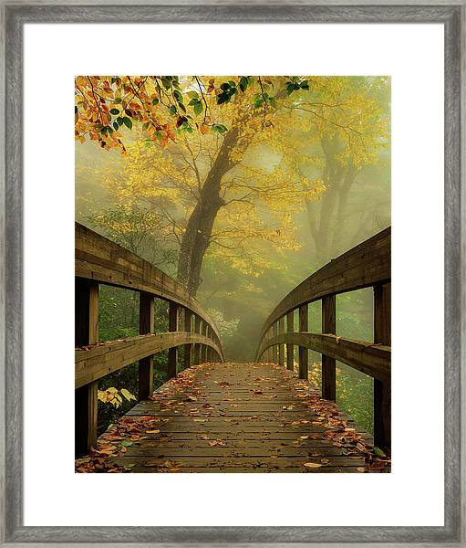 Tanawha Trail Blue Ridge Parkway - Foggy Autumn Framed Print