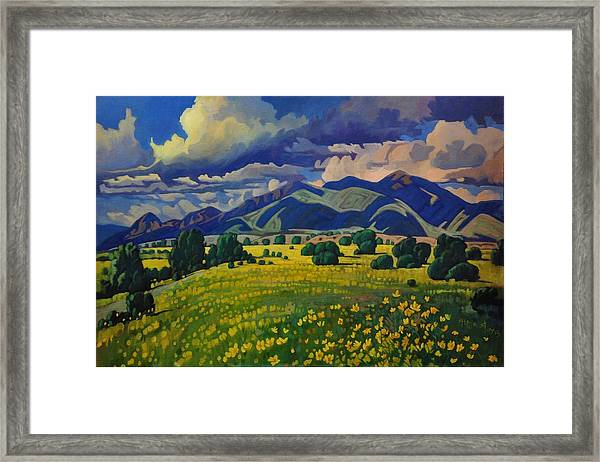 Taos Yellow Flowers Framed Print