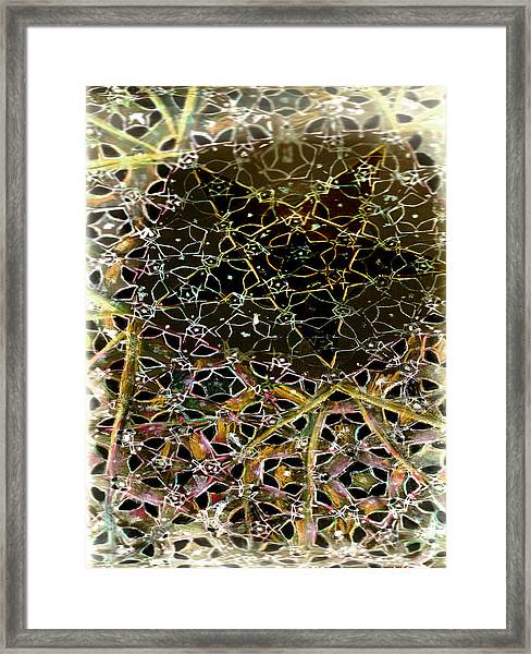 Tela 2 Framed Print