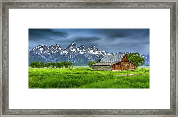 Tenuous Situation Framed Print