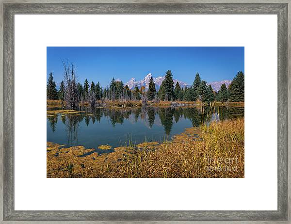 Tetons Majesty Framed Print