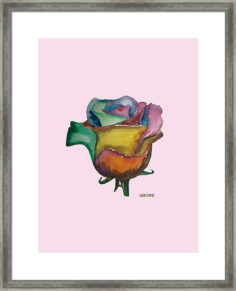 The 1111 Global Rose Framed Print