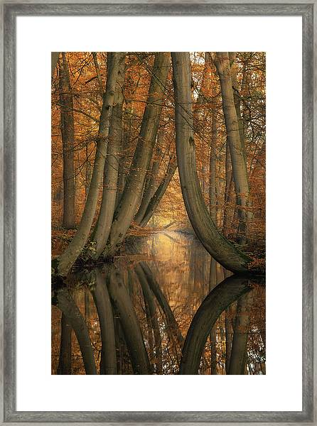 The Bent Ones Framed Print