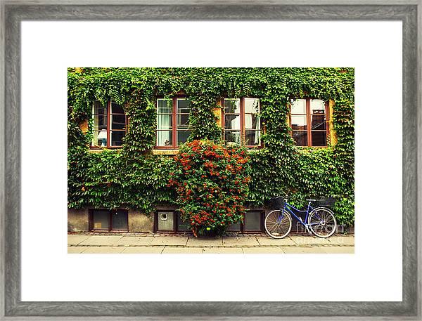 The Bicycle In Copenhagen Framed Print
