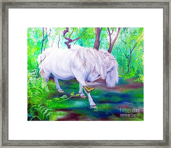 The Butterfly And The Pony Framed Print by Abbie Shores