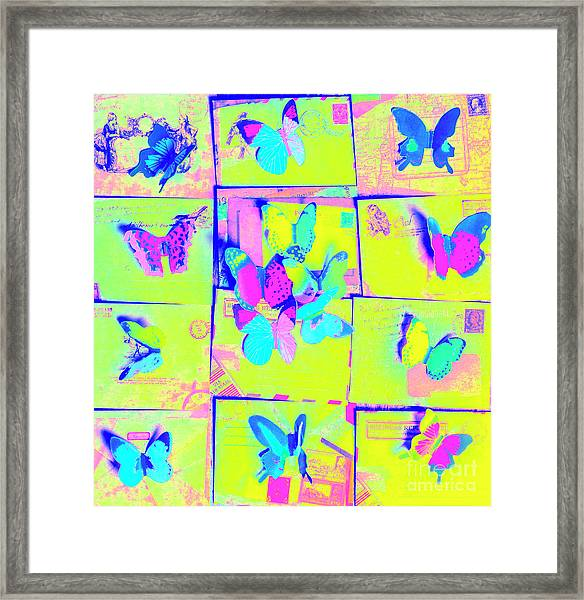The Butterfly Courier Framed Print