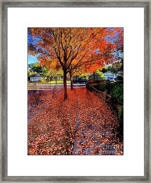 The Color Of Things Framed Print