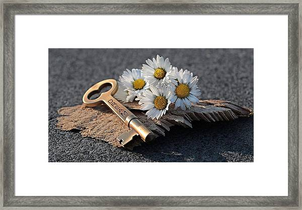 The Dream Key Framed Print