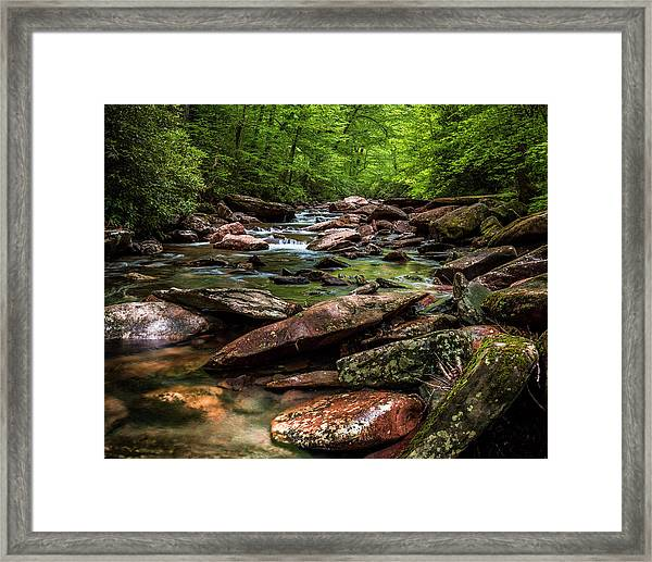 The Forest Primeval Framed Print