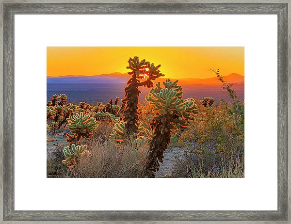 The Fourth Day Framed Print