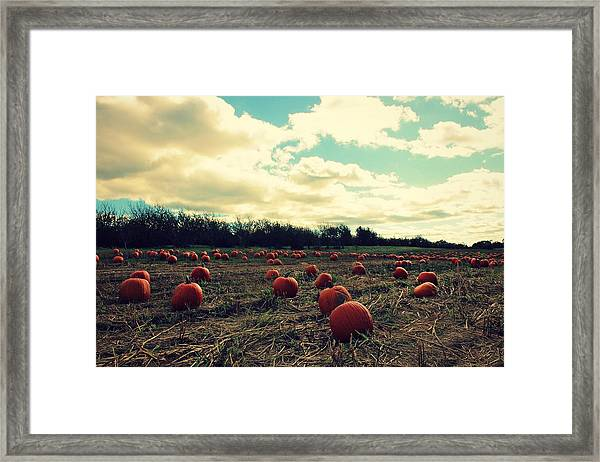 Framed Print featuring the photograph The Great Pumpkin by Candice Trimble
