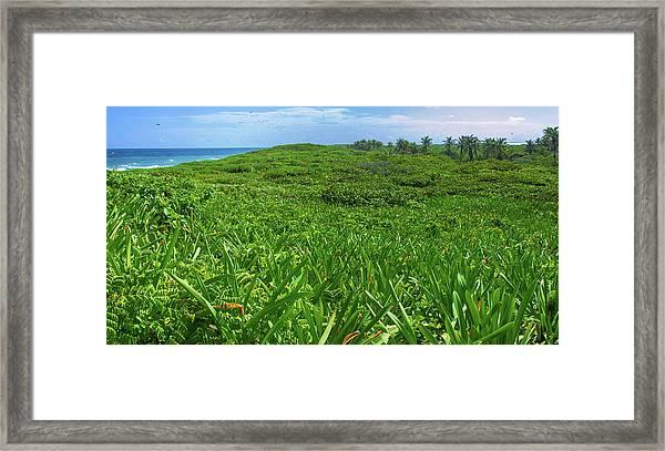 The Green Island Framed Print