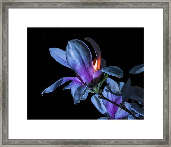 The Inner Mounting Flame Framed Print