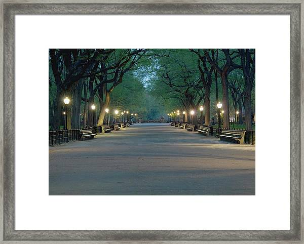 The Mall In Central Park Framed Print