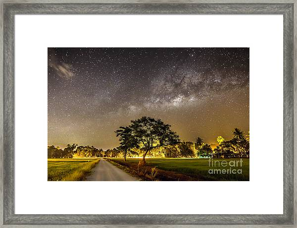 The Milky Way And The Tree Stand Alone Framed Print