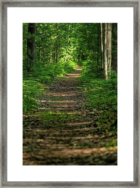 The Path Less Traveled Framed Print