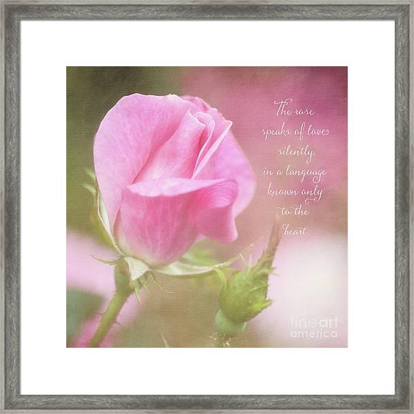 The Rose Speaks Of Love Photograph Framed Print