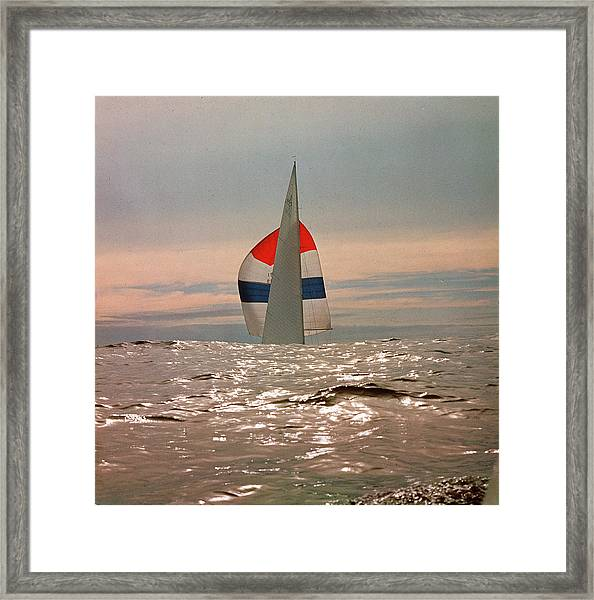 The Sailboat Nefertiti Competing In The Framed Print