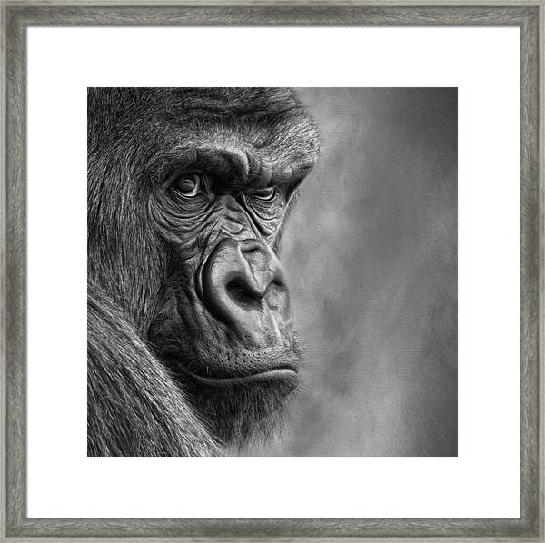 The Serious One Framed Print